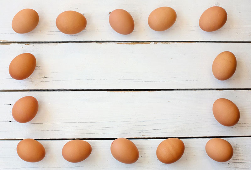 дюжина яиц