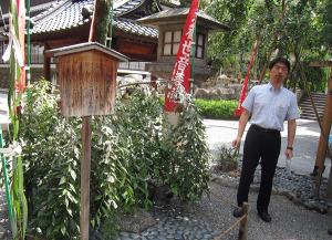 японская икэбана